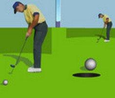 3D Golf Şampiyonası
