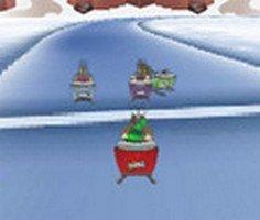 Noel Yarışması