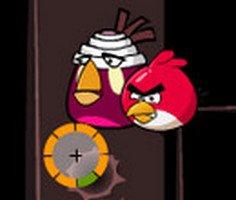 Angry Bird Atış