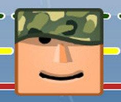 Ordu İstifçisi