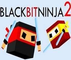 Siyah Kutu Ninja 2
