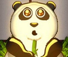 Kabarcık Panda