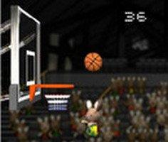 Tavşan Basketbolu