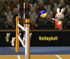 BunnyLimpics Volleyball