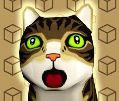 Kedi Kutusu Bovling