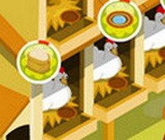 Tavuk Kümesi