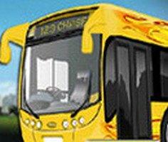 Şehir Otobüsü Sürücüsü