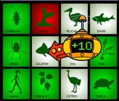 Canlıların Sınıflandırılması Hayvanlar ve Bitkiler