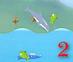 Olimpik Yunus Balığı 2