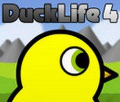 Ördeğin Yaşamı 4