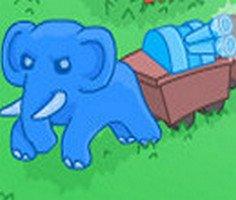 Fil Macerası