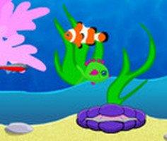 Balık Eğlencesi