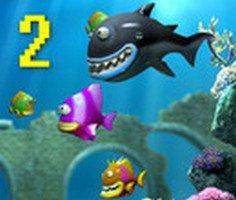 Büyüyen Balık 4