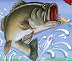 Balıkçılık Şampiyonu