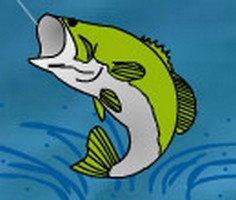 Balıkçılık Çılgınlığı