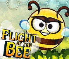 Arı Uçuşu