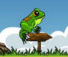 Korkusuz Kurbağa