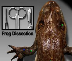 Kurbağa Diseksiyonu