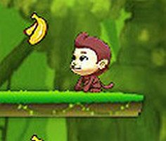 Maymun Muz Toplama