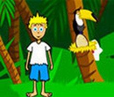 Eğlenceli Orman