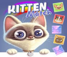Yavru Kedi Eşleştirme oyunu oyna