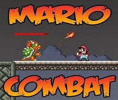 Mario Karate