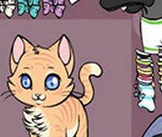 Meow Meow Giydir