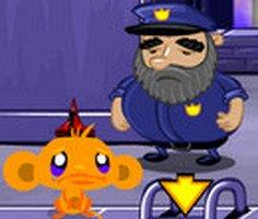 Maymunu Mutlu Et: Ninja Maymunlar