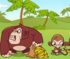 Maymun Muz Çalma 2