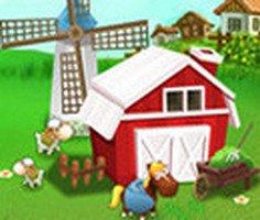 Günlük Çiftlik İşleri