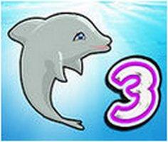 Yunus Balığı Gösterisi 3