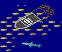 Ağ Balıkçılığı