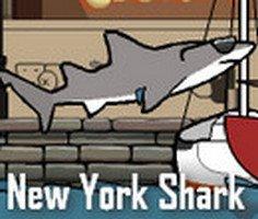 New York Köpekbalığı