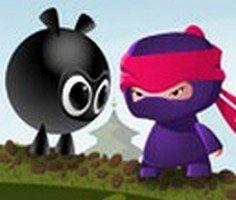 Ninja Diyarı