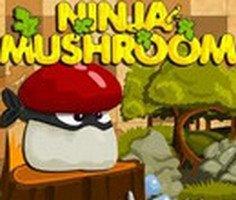 Ninja Mantar