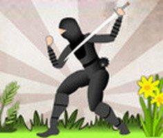 Ninjaların İntikamı
