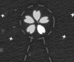 Çiçek Sembolünü Yakala