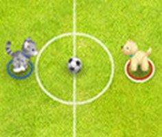 Pet Futbol