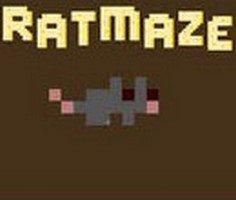 Sıçan Labirenti