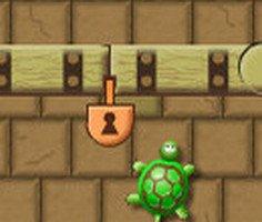 Kaplumbağa Macerası