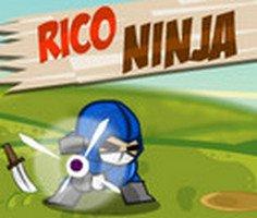Ninja Bıçağı