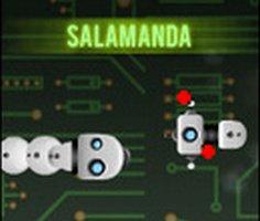 Play Salamanda