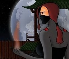 Ninjanın Gölgesi