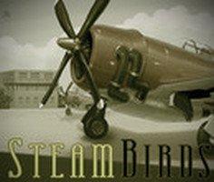 Buharlı Uçak