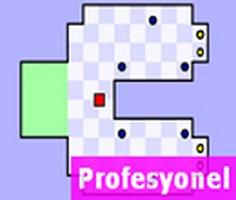 Dünyanın En Zor Oyunu Profesyonel