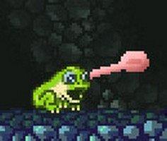 Kurbağa Macerası