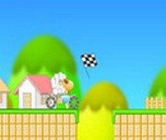 Yarışcı Koyun